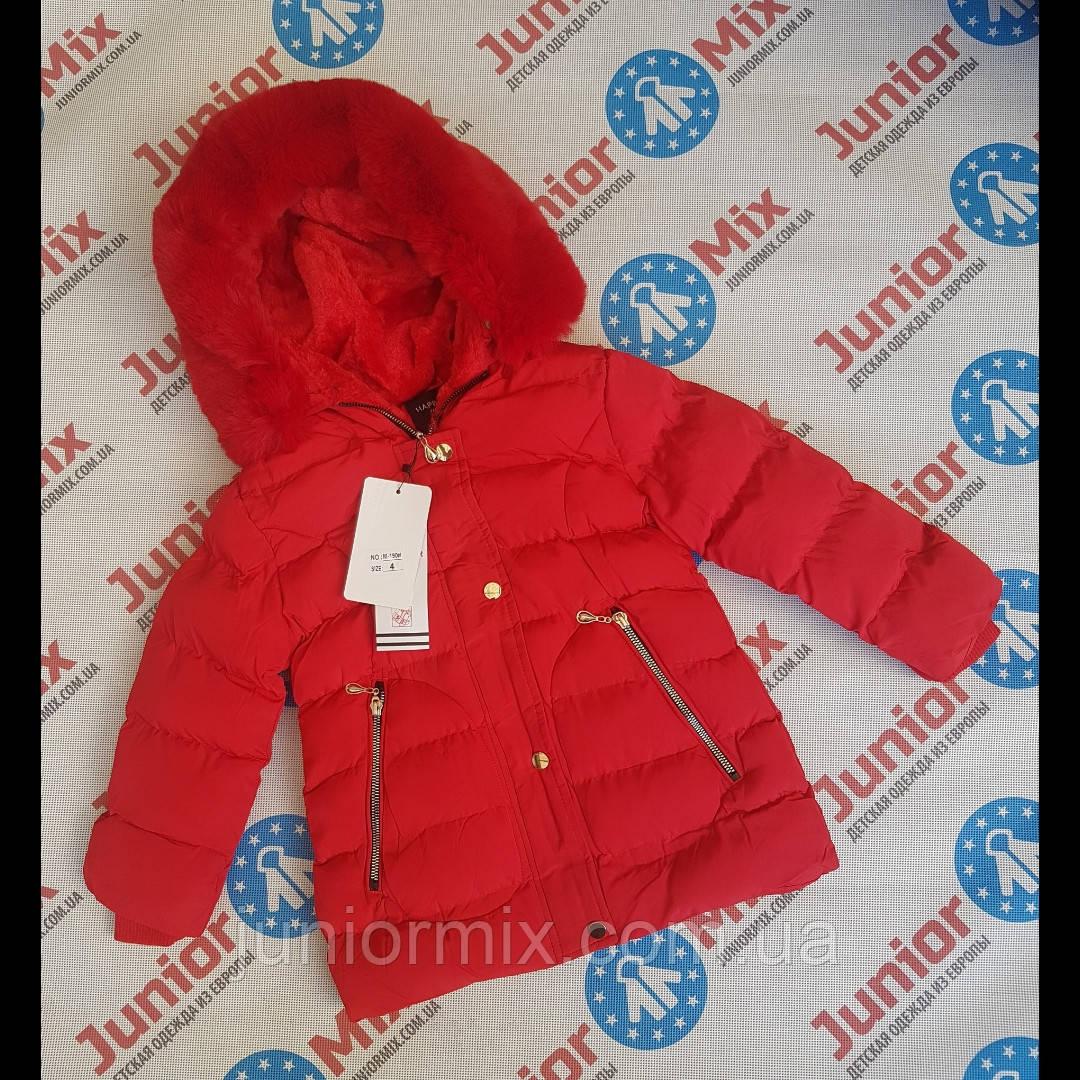Зимние детские куртки для девочек оптом  Happy star