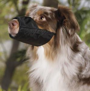 Черный намордник для собак размер № 1