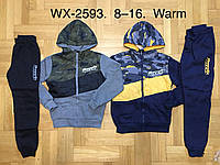 Спортивный утепленный костюм 2 в 1 для мальчика оптом, F&D, 8-16 лет,  № WX-2593, фото 1