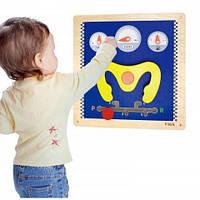Деревянная настенная игрушка,бизиборд, Viga Toys 50438, фото 1