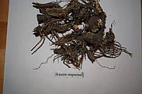 Корень эхинацеи 100 грамм