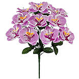 Букет орхидей фаленопсис, 52см (8 шт. в уп), фото 2