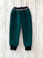 Теплые штаны для мальчика с начесом