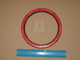 Сальник ступицы задней КАМАЗ ЕВРО-2 (крышка манжеты) (Элемент). 65115-3104017
