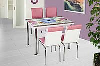 """Раскладной стол обеденный кухонный комплект стол и стулья рисунок 3д """"Голубая ромашка"""" стекло 70*110 Лотос-М, фото 1"""