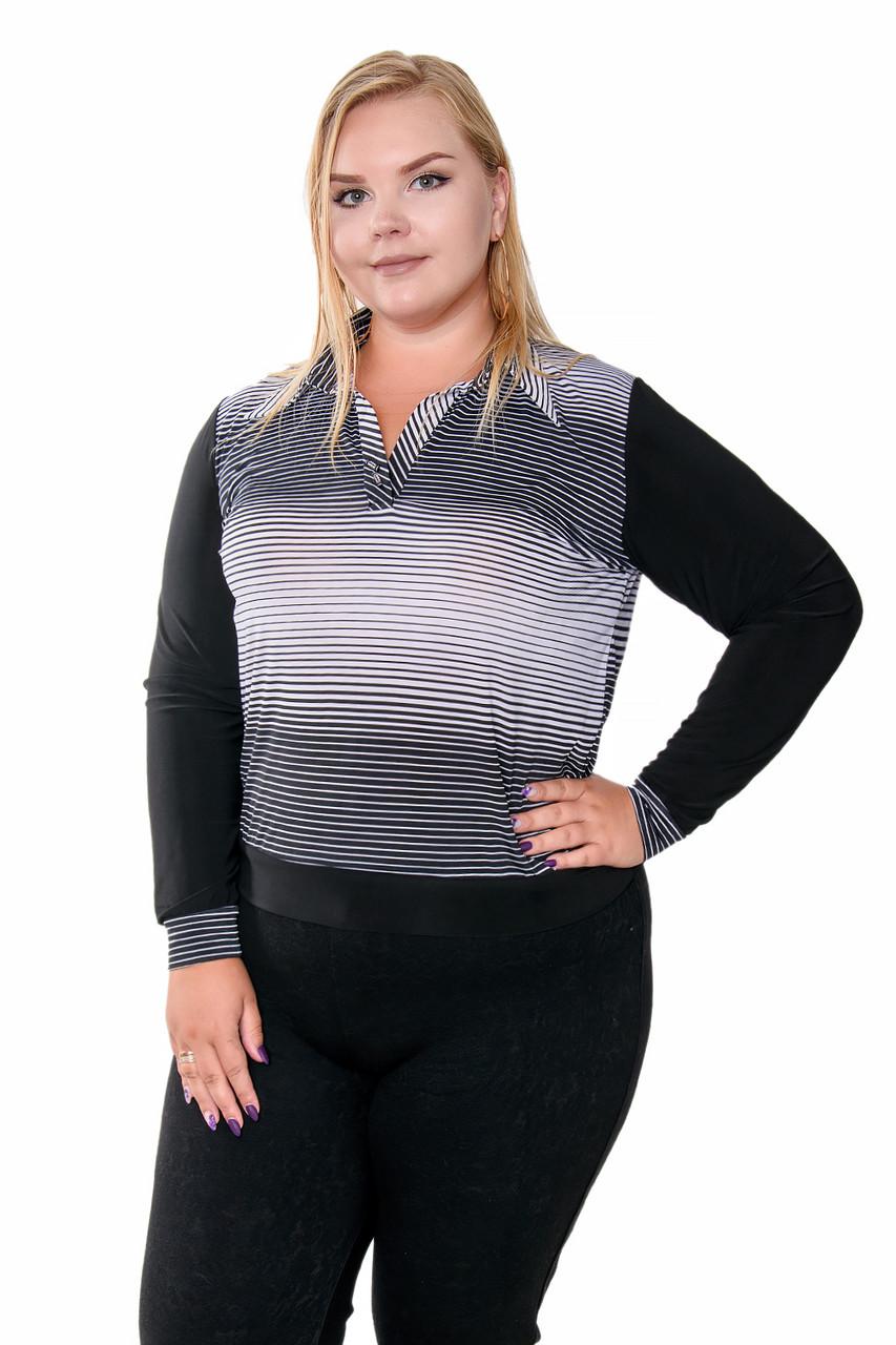 Удобные женские блузы в полоски 52