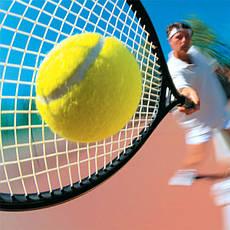 Большой теннис, общее