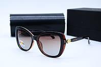 Солнцезащитные очки Bvl 8216 коричневые, фото 1