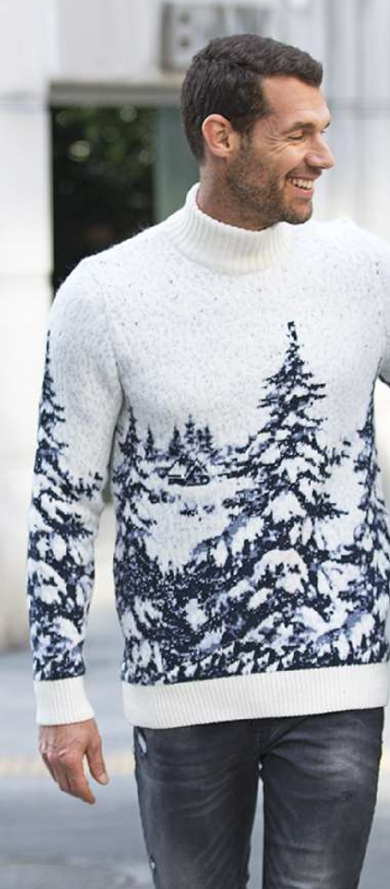 Свитер мужской Pulltonic Spruce