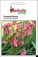 Лихнис вискария Розовый блеск, 0,1 г Садиба Центр