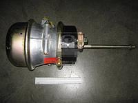 Камера тормозная с пружинным энергоаккумулятором (в сборе, тип 24/30) (Дорожная карта). 9253761000
