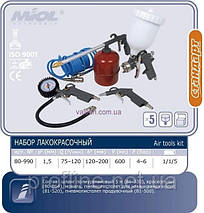 Набор для покраски Miol 80-990, фото 2