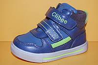 Детские демисезонные ботинки Clibee Польша p261 Для мальчиков Синие размеры 21_26, фото 1