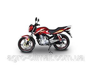 Мотоцикл Hornet GT-200 (200 куб. см) бордово-червоний