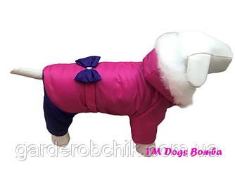 """Комбинезон зимний для собаки """"Девчонки"""" АD-2 с закрытым животом. Одежда для собак"""