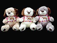 Собака 38 см в футболке мягкая игрушка на подарок взрослым и детям плюшевая игрушка