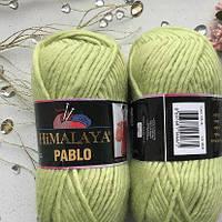 Пряжа Himalaya Pablo 123-18 салатовая