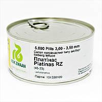 Салат ПЛАТИНАС | PLATINAS Rijk Zwaan 5000 шт, фото 1