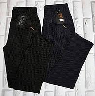 Штаны женские брюки лосины весна осень 50-52 раз (8427), фото 1