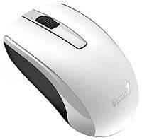 Мышь GENIUS ECO-8100