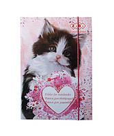 Папка для тетрадей Cute Cat карт на рез B5+  ZiBi txt ZB 14983
