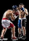 Товары для бокса