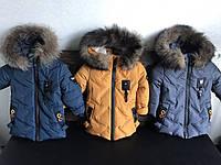 Зимняя куртка для мальчика Флэш, фото 1