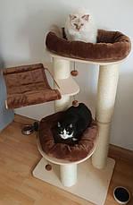 Когтеточка для котов Eco Premium L с двумя лежанками и гамаком, фото 2