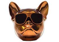 Собака колонка беспроводная Bluetooth S3 dog «CoolDog Французский Бульдог» / Колонка aerobul, цвет золото