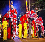 Туристическая виза в Индию подешевела