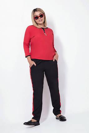 Женский костюм с брюками и рукавом реглан, красный. Размеры: 48, 50, 52, 54, фото 2