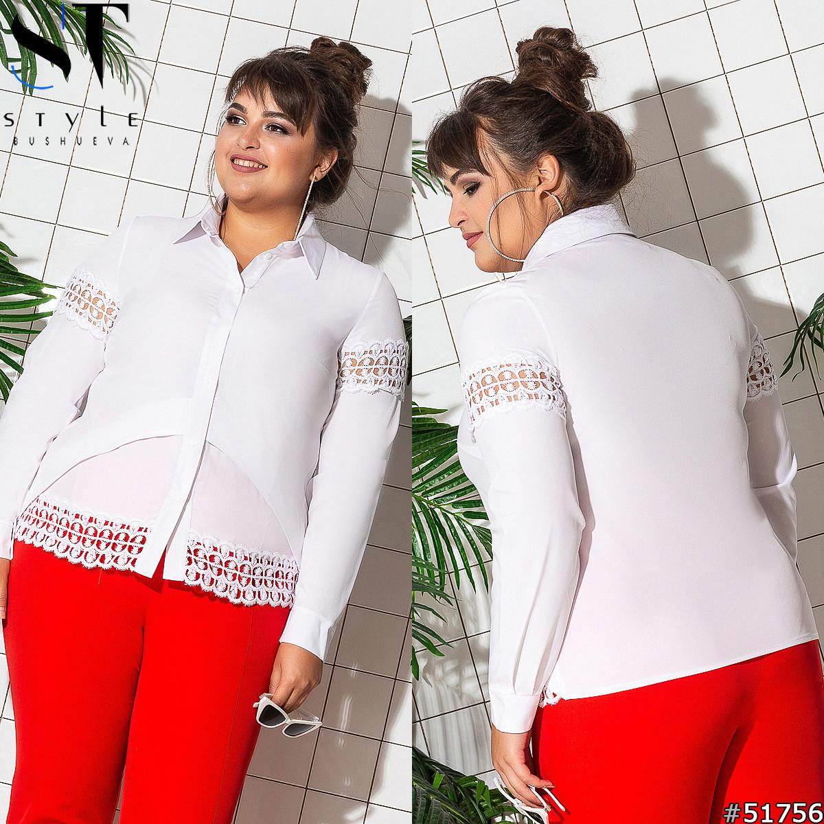 Женская блуза больших размеров 51756