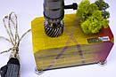 Настільна лампа Pride&Joy зі стабілізованим мохом, фото 2