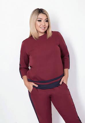 Женский брючный костюм с лампасами, бордовый. Размеры: 48, 50, 52, 54, фото 2