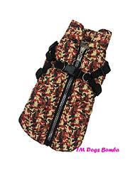 """Жилет для собаки со шлейкой GS-1 ТМ """"Dogs Bomba"""". Одежда для собак"""