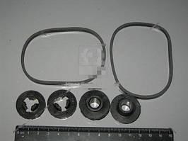 Ремкомплект фильтра топливного (3наим.) (Россия). 740.1117000