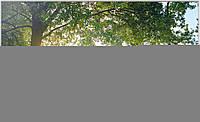 Телевизор Samsung UE32H6410 (400Гц, Full HD, Smart, Wi-Fi, 3D, ДУ Touch Control), фото 1