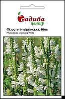 Физостегия віргінська, біла, 0,1 г Садиба Центр
