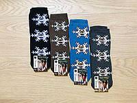 Носки женские зимние махровые хлопок Clever Socks размер 23-25 (36-40) ассорти