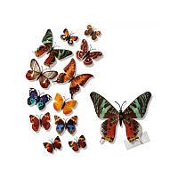 (12 шт) Набор бабочек 3D на магните, КОРИЧНЕВЫЕ цветные