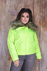 Жіноча осіння куртка з плащової тканини на синтепоні, зі знімним хутряним коміром, норма і батал великі розміри