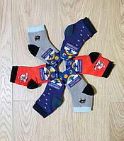 Носки детские зимние махровые хлопок Житомир ТМ Premium размер 12-14(20-22) ассорти