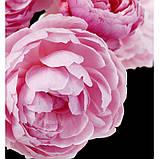 ADRIANA ROSE жіночі парфуми Yodeyma 15 мл, фото 3