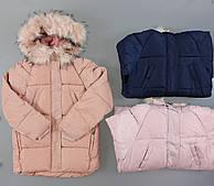 Куртка на меху для девочек Seagull оптом, 8-16 лет .