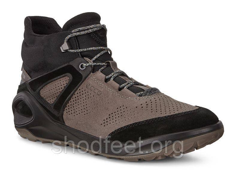 Мужские ботинки ECCO BIOM 2GO GORE-TEX 801944-56695