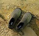 Летние пляжные кроссовки (аквашузы) Черный с жёлтым 45, фото 7
