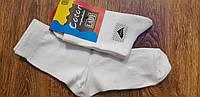"""Шкарпетки жіночі,стрейчові""""Coton"""" Туреччина"""" 36-40 білі"""
