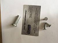 Принимаем заказы на изготовление заклепок алюминиевых. ГОСТ 10299-80 (полукруглая головка), ГОСТ 10300-80 (потайная головка), ГОСТ 10303-80 (плоская головка).
