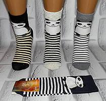 Носки женские хлопок махровые за 1 пару 35-39 раз (Х-242)