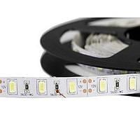 Светодиодная LED лента гибкая 12V PROlum™ IP20 5630\60 Standart, фото 1